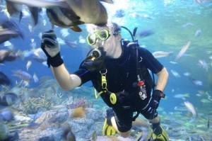 ดำน้ำทะเลพัทยา1