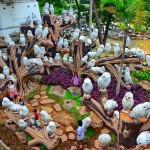 สวนนงนุชพัทยาน่าเที่ยว2
