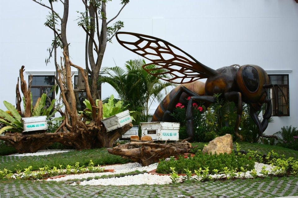 สวนผึ้งพัทยา Big Bee Farm