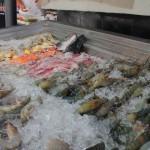 นิยมการปิ้ง-บุฟเฟต์ทะเลเผาพัทยา10