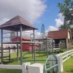 ฟาร์มแกะ สถานที่ท่องเที่ยวพัทยา10
