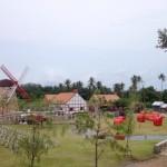 ฟาร์มแกะ สถานที่ท่องเที่ยวพัทยา4