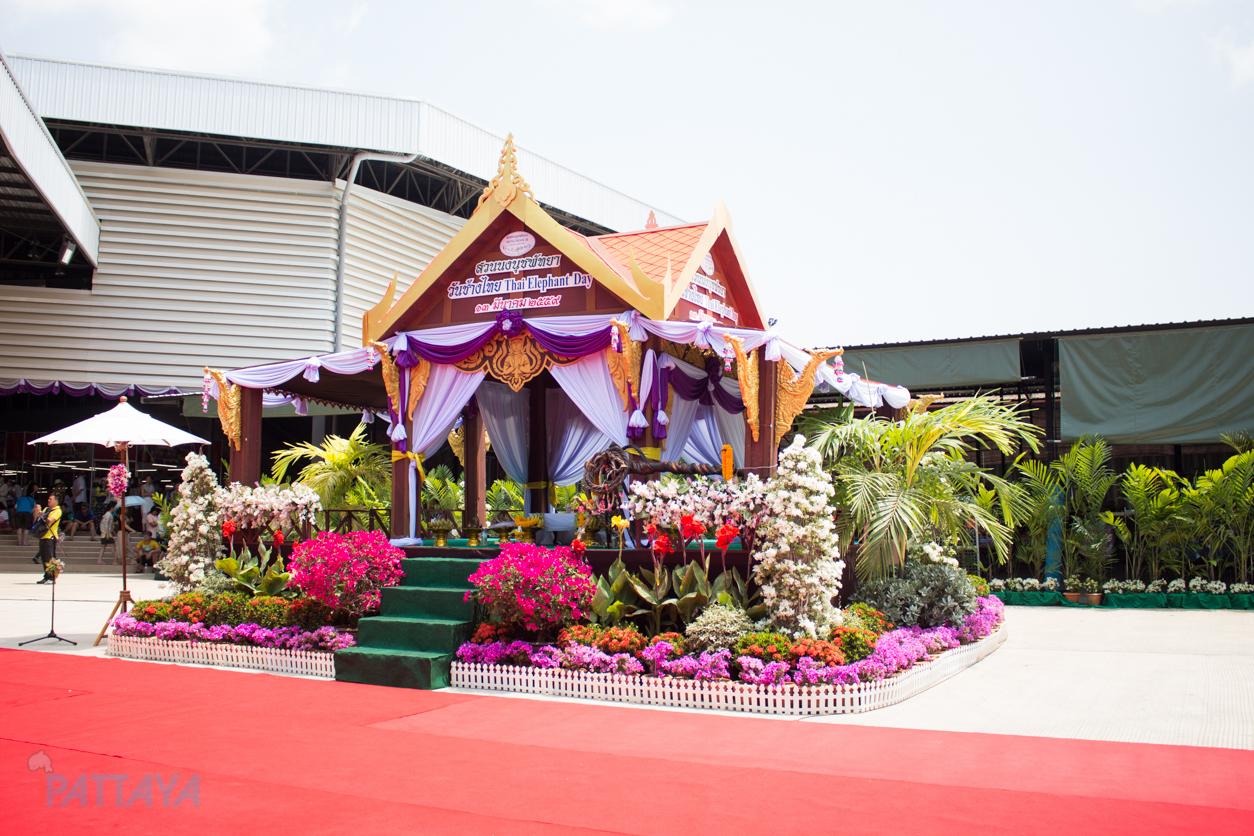 วันช้างไทยสวนนงนุชพัทยา