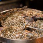 seafood buffet pattaya marriott courtyard pattaya9